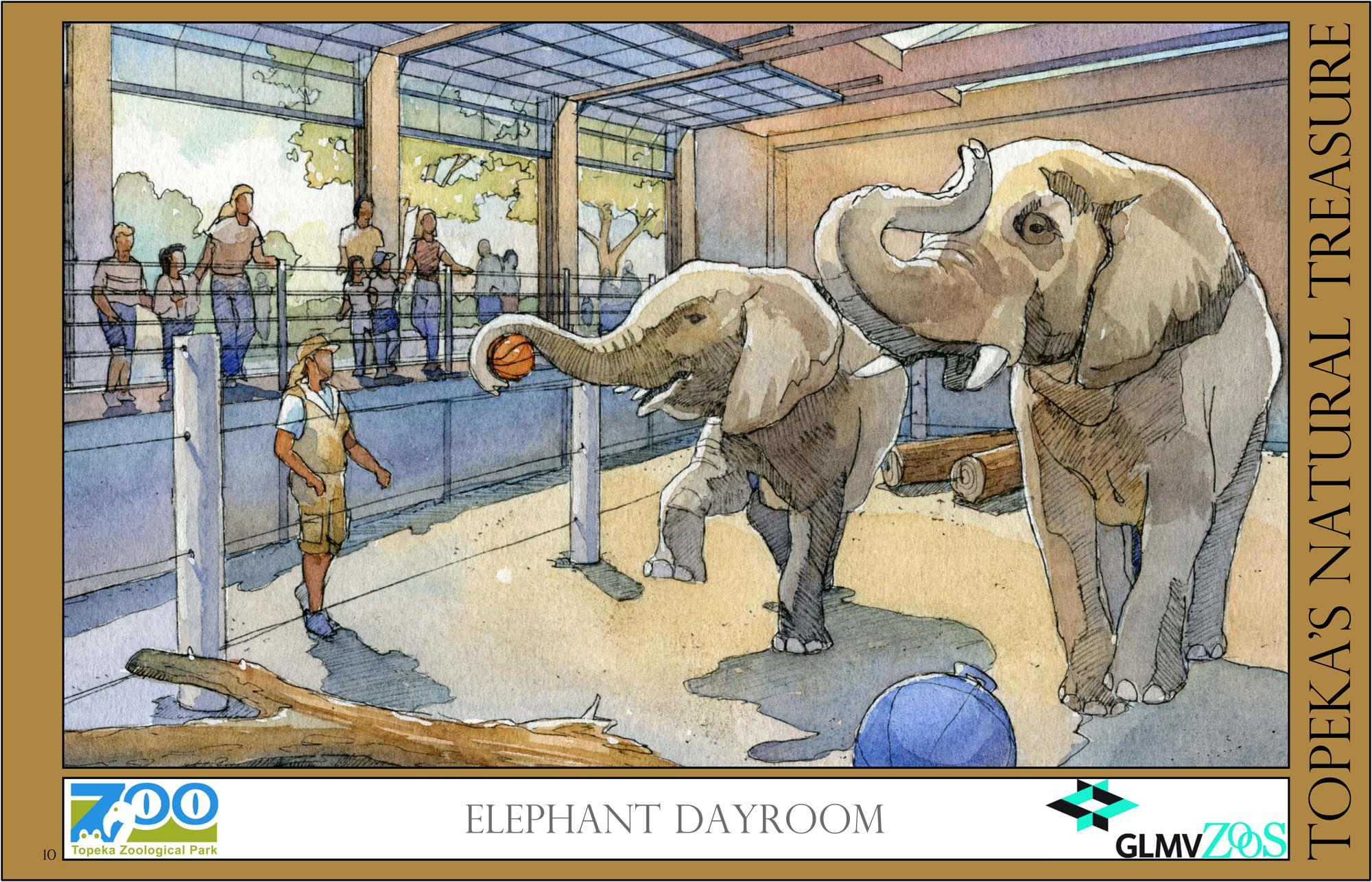 Elephant Dayroom