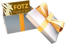 giftbox-fotz