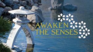Awaken The Senses Cover